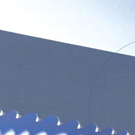 Arntz-19-TC-Blue-Line